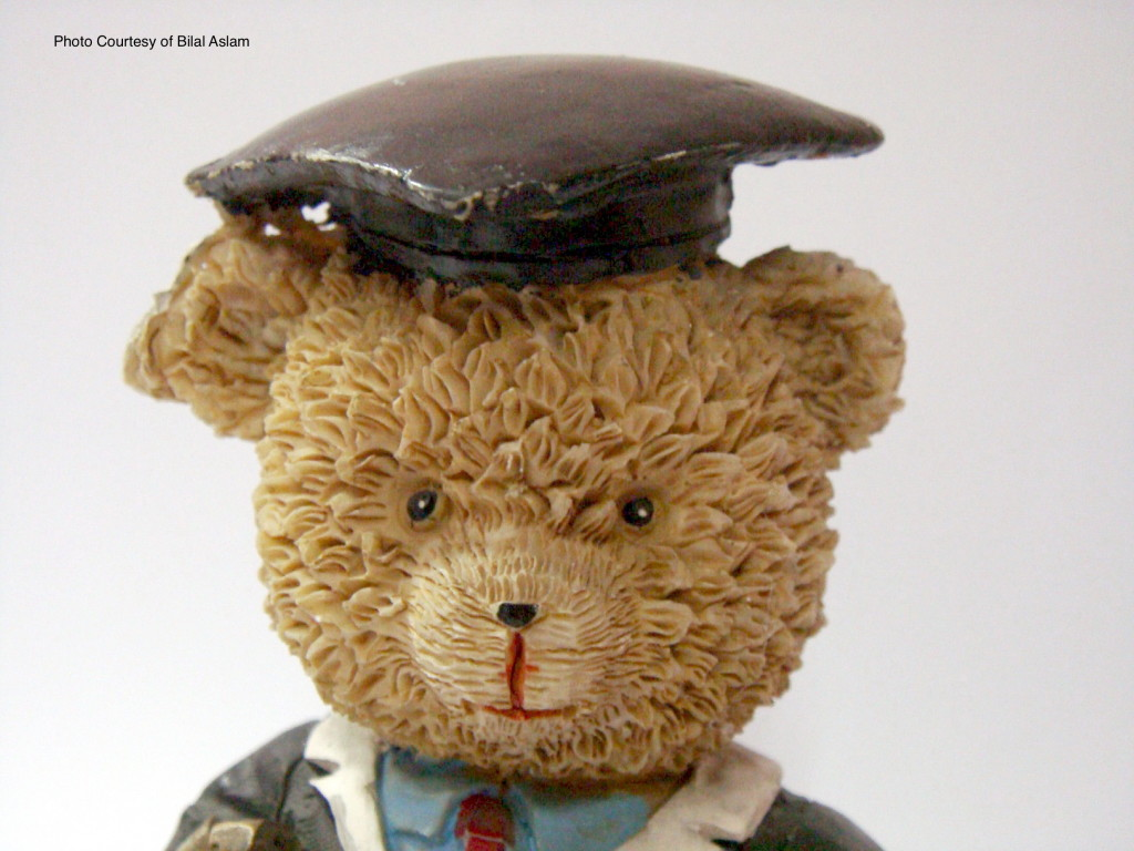 Teddy_Bear_Graduate